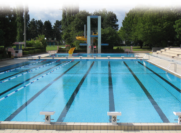 Bassin olympique for Piscine wesserling