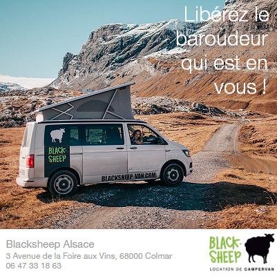 Blacksheep Van - Alsace