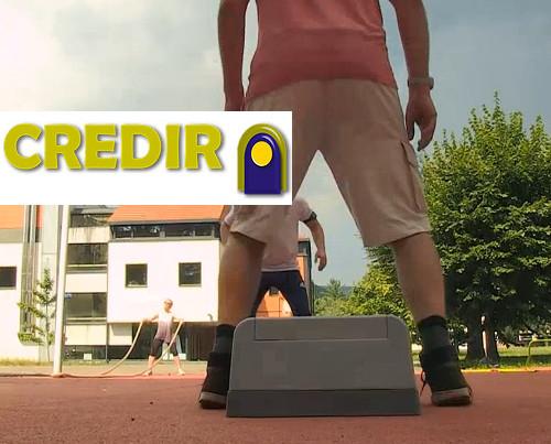 CREDIR_accueil_2.jpg