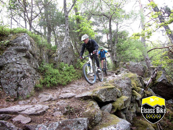 Elsass_Bike_1.jpg