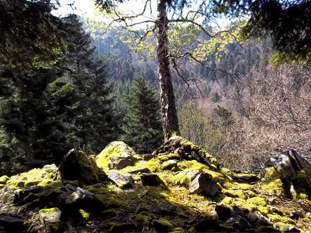 Rando_Val_Argent_16.jpg-Randonnée-Marche sportive