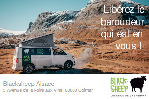 Blacksheep Van - Alsace : libérez le baroudeur qui est en vous !